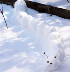 Make snow critters