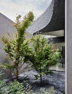 Twig House in Melbourne by Leeton Pointon & Allison Pye | Yellowtrace Melbourne, Concrete Sculpture, Concrete Forms, Architectural Sculpture, Timber Panelling, Patio Interior, Tower House, Wooden Ceilings, Brutalist