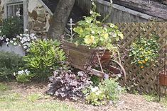 Create a garden in a rustic wheel barrow or cast-off wagon, and you can move it a round to add pops of color where and when you need it.  Photo: Nancy Andrews   thisoldhouse.com