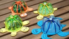 turtles that swim and they're recycling old bottles