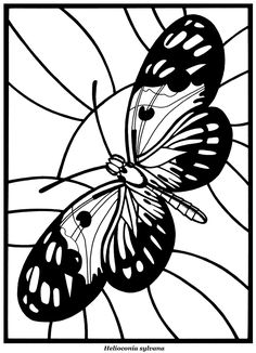 BEAUTIFUL BUTTERFLIES  Stained Glass Coloring Book  by: A. G. Smith -   Dover Publications - COLORING PAGE 2