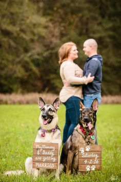 Engagement photo with dogs. @_ashah