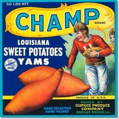 Fruit Crate Labels - Antique Vintage Art Champ Louisiana Sweet Potatoes Painting