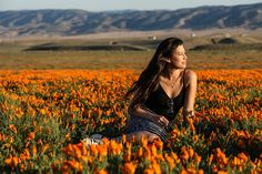 The Stumbleweeds ( Antelope Valley Poppy Reserve, Poppies, Cute Pictures, Channel, Public, Facebook, Photo And Video, Check, Youtube