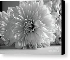 Nostalgia Canvas Print by Onedayoneimage Photography.  All canvas prints are professionally printed, assembled, and shipped within 3 - 4 business days and delivered ready-to-hang on your wall. Choose from multiple print sizes, border colors, and canvas materials.