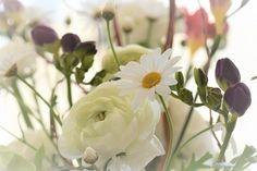 Free Image on Pixabay - Flower Blossom, Leaves, White Online Flower Delivery, Flower Delivery Service, Spring Flowers, White Flowers, Send Flowers, Online Florist, Flower Meanings, House Plants Decor, Nature Plants