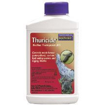 Thuricide- Organic gardeners like this natural microbial insecticide. Thuricide's natural bacterial action is non-toxic to birds, bees, pets or humans. When leaf-chewing worms eat the treated leaves it paralyzes their digestive system and they starve to death. May be used on garden vegetables and tomatoes right up to harvest time. Controls gypsy moths, inchworms, canker-worms, tent caterpillars, cabbage looper, tomato hornworms, etc. Active ingredient is bacillus thuringiensis.