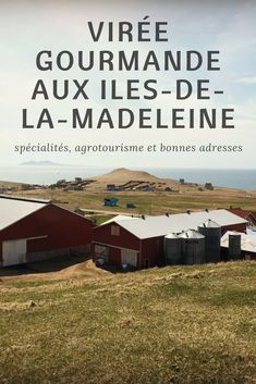 Virée gourmande aux Iles-de-la-Madeleine : spécialités locales, agrotourisme et bonnes adresses Bas Saint Laurent, Canada Travel, Where To Go, Routes, Laurence, Road Trips, Traveling, Illustration, Canada Landscape
