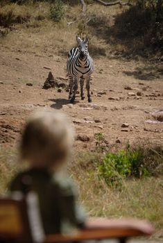 Kids and zebras, up close and personal          Photo by Stevie Mann