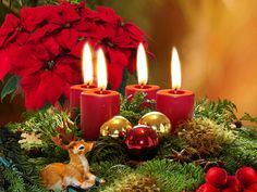 Awesome Easy Christmas Candle Displays are approaching for the holiday season to decorate your house with the trendiest Christmas decorations. Every single year Christmas Candy Cane Decorations, Christmas Flowers, Noel Christmas, Christmas Candles, Christmas Centerpieces, Simple Christmas, Christmas Ornaments, Christmas Images, Gold Ornaments