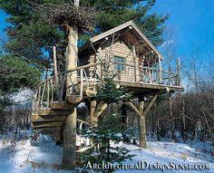 Maple Island Tree House by ushnish.de, via Flickr