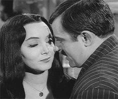 my gif vintage horror gifset the addams family carolyn jones Gomez Addams Morticia Addams John Astin Addams Family cat addams