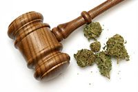 """Federal Judge to Hold Hearing on Whether Cannabis Should be Removed as a Schedule 1 Drug  """"Testimony regarding the constitutionality of the federal statute gavelbuddesignating marijuana as a Schedule I Controlled Substance will be taken on Monday, October 27 in the United States District Court for the Eastern District of California in the case of United States v. Pickard, et. al., No. 2:11-CR-0449-KJM."""""""