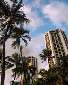 Moving To Hawaii, Hawaii Travel, Solo Travel, Usa Travel, Beach Aesthetic, City Aesthetic, Travel Aesthetic, Places To Travel, Places To Visit