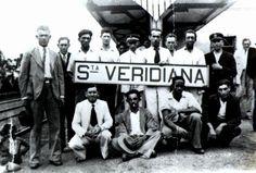 staveridiana9372.jpg (500×338)