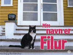 Mitt navn er Filur Ark