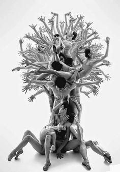 Ballet Extendo