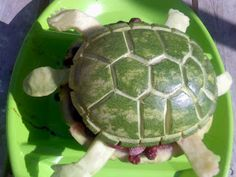 Mawiomi - A gathering place for sharing foods, recipes and stories.: Turtle Fruit Platter