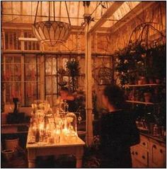 practical magic- sexy little greenhouse attached to the kitchen :)