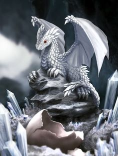 White Dragon Hatchling by dashase.deviantart.com on @deviantART