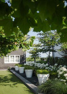 Modern garden with lawn # National Garden # ideas Source by DeWemelae Small City Garden, Home And Garden, Balcony Garden, Garden Planters, Landscape Design, Garden Design, Vertical Garden Plants, Backyard Paradise, Garden Inspiration