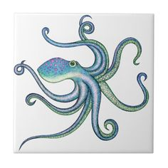 Shop Octopus Tile created by Heather_Stinson. Octopus Drawing, Octopus Painting, Octopus Art, Octopus Images, Rock Painting, Octopus Illustration, Octopus Design, Monogrammed Stationery, Art Lessons Elementary