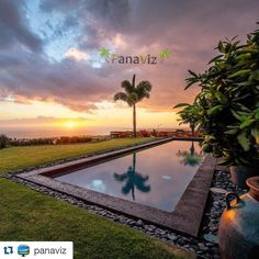 One lonely palm tree and a glorious Hawaiian sunset.  Photo by @PanaViz #resortphotography #hotelphotography