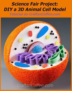 Is there a science project in your future? Earlier this week, I shared how to make a Plant Cell Model, and today I have a tutorial for making a Model of an Animal Cell. (How To Make Bracelets With Charms) 3d Animal Cell Model, 3d Cell Model, 3d Plant Cell Model, 3d Animal Cell Project, Cell Model Project, Cell Project Ideas, Biology Projects, Science Projects, School Projects