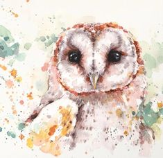 An adorable hoot owl painted in Watercolor. By Sillier Than Sally