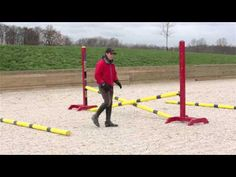 Rushing Fences: How to school a horse that rushes at jumps (Ro) 1 flat exercise, two fence exercises