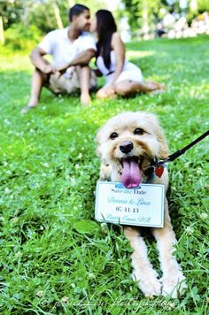 Save the date idea..but instead of the dog, have kira laying there with the sign :)