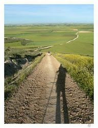 We all took pictures of our own shadows along the Camino!!