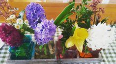 Frühlingsblumen, Frühlingsblumen Berlin, Hyazinthen, Frühling, Blumendeko, Deko aus Blumen