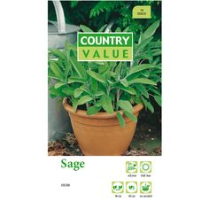 Country Value Sage Seeds | Bunnings Warehouse