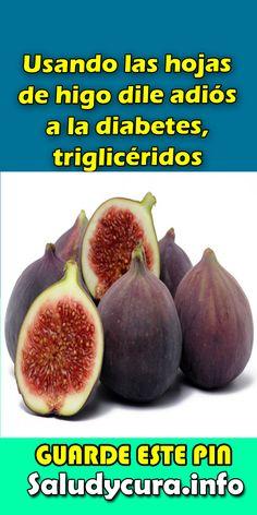 Usando las hojas de higo dile adiós a la diabetes, triglicéridos. #higo#diabetes