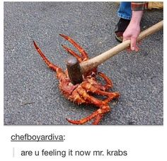 ARE YOU FEELING IT NOW MR KRABS