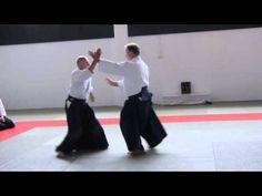 Aikido Seminar with Jan Nevelius Sensei - YouTube