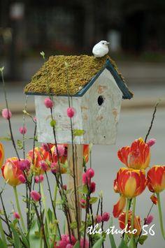 Soneto do Passarinho     Como é belo um pássaro em liberdade   Voando pelos campos bem cedinho,   Ou no galho d' árvore fazendo um ninh...