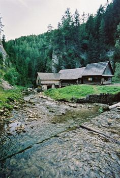 Cabin, Mountains, House Styles, World, Nature, Travel, Naturaleza, Viajes, Cabins