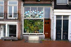 Globes et plantes vertes à Amsterdam : Quartier de Waterlooplein : http://www.vanupied.com/amsterdam/quartier-amsterdam/waterlooplein-ancien-quartier-juif-amsterdam-et-plantage.html