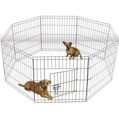 #Dog #Exercise #Pen 24'' Small #Pet #Playpen #Puppy #Kennel #Cage #Play Pen #Wire #Fence https://t.co/VdufCh19oT https://t.co/nIr3P50yAX