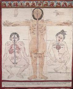 Embryology on the History of Tibetan Medicine