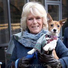 """Clarence House on Twitter: """"Animal lover The Duchess of Cornwall enjoys a hug with her rescue dog Bluebell. Happy #NationalDogDay!"""
