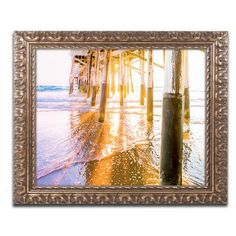 "Trademark Art Newport Pier Sunset by Ariane Moshayedi Framed Photographic Print Size: 11"" H x 14"" W x 0.5"" D"