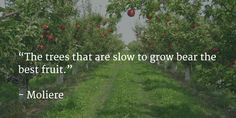 """""""The trees that are slow to grow bear the best fruit."""" - Moliere"""