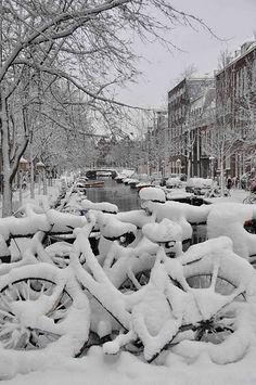 Amsterdam bikes in winter