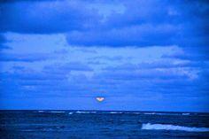 Blue meets Blue... Kauai  ©RHolt