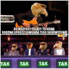 Tak Tak, Polish Memes, Best Memes, Kinky, Funny Jokes, Haha, Humor, Husky Jokes, Ha Ha
