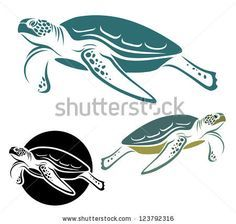 Sea turtle - vector illustration - stock vector