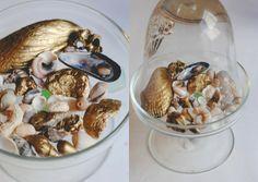 paint sea shells gold for a pretty & nautical shelf display.